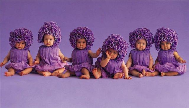 фиалка, малыши, детские костюмчики