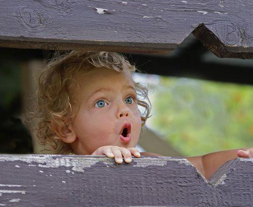 забор, ограда, эмоции детей, удивление, девчушка